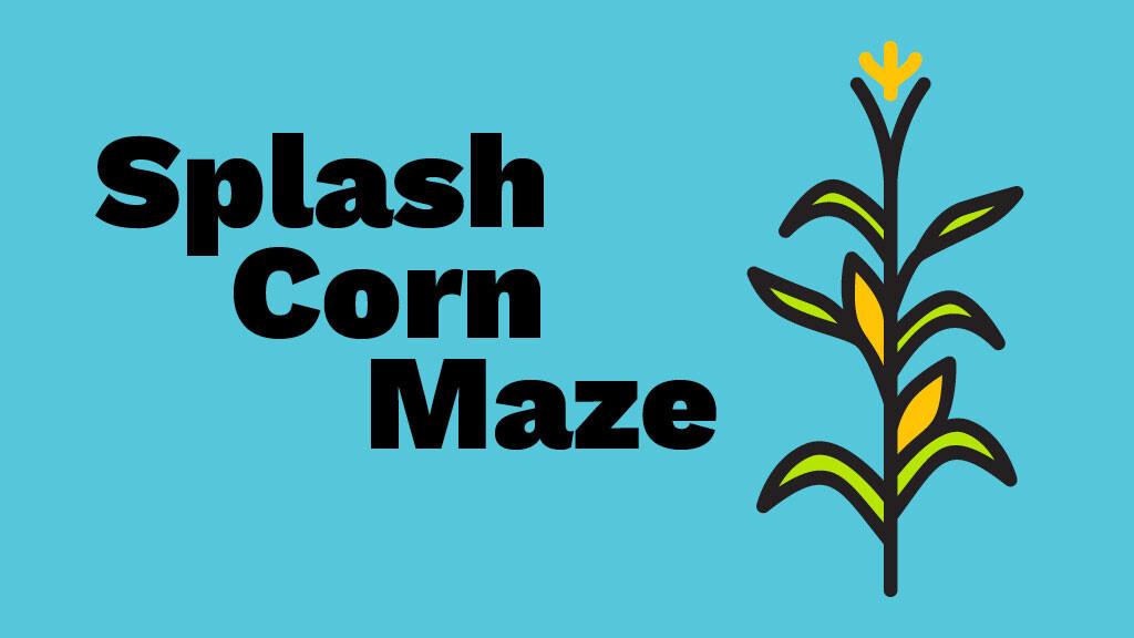 Splash Corn Maze